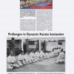 presse2008_karate05