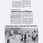 presse2009_badminton01