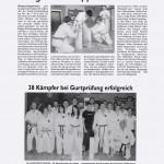 presse2010_karate01