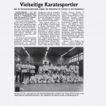 presse2010_karate04