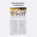 presse2011_karate01