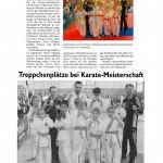 presse2011_karate04