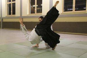 aikido-serie-bild02