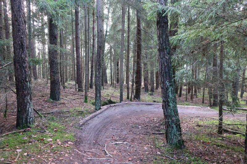 MTB-Trainingsparkour in Ellingen und Trailbau in Pleinfeld – ein aktueller Zwischenstand